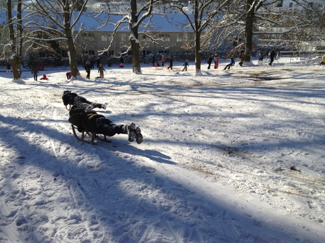 The packed sledding hill.